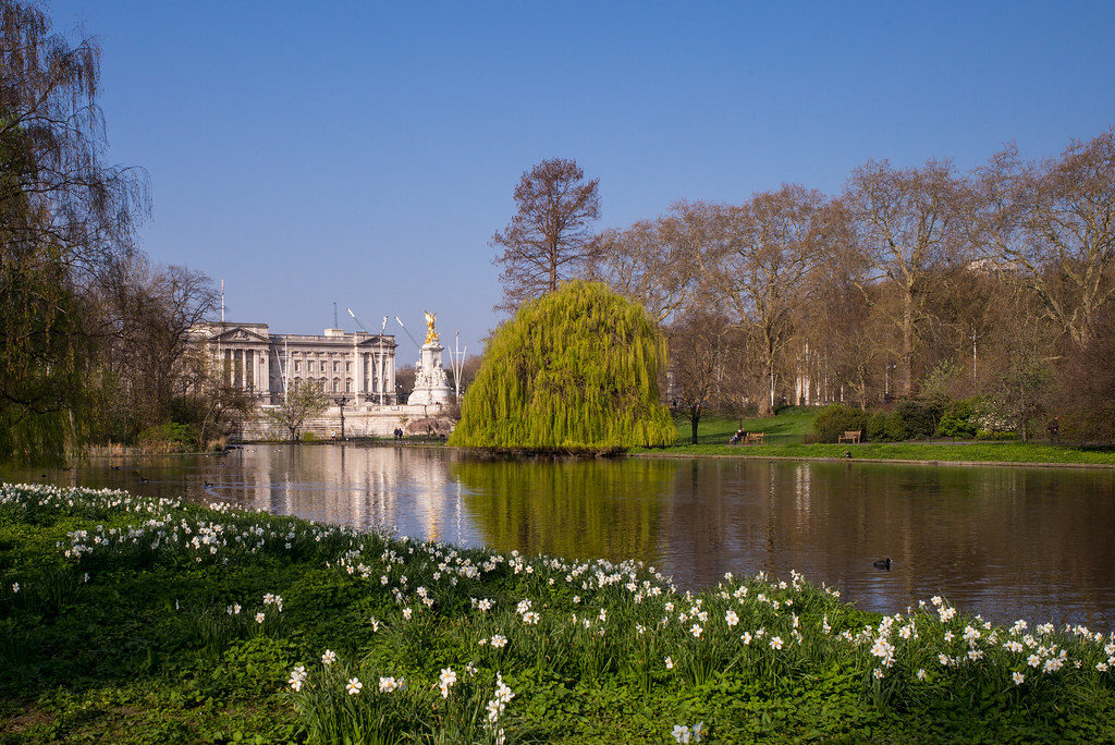St James Park green with flowers and Buckingham palace in the Background
